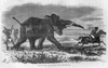 Elephant Charge Black And White Image